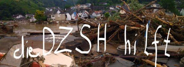 DZSH – wir helfen